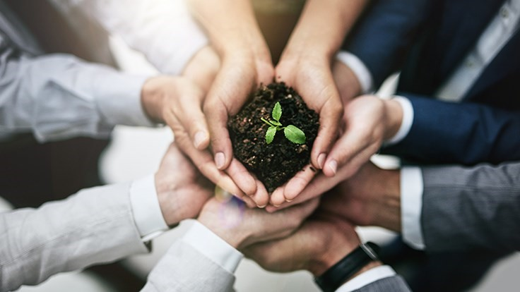 Nine facts for creating a sustainability culture
