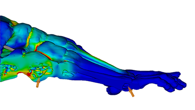 ANSYS, MachineWorks expand use of Polygonica