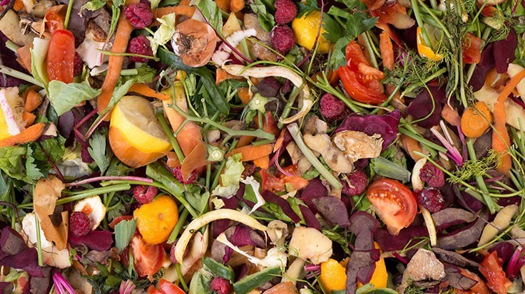 Food waste prevention campaign aimed at helping Californians keep organics out of landfills