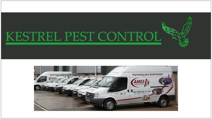 Rollins Acquires Pair of UK Pest Control Firms