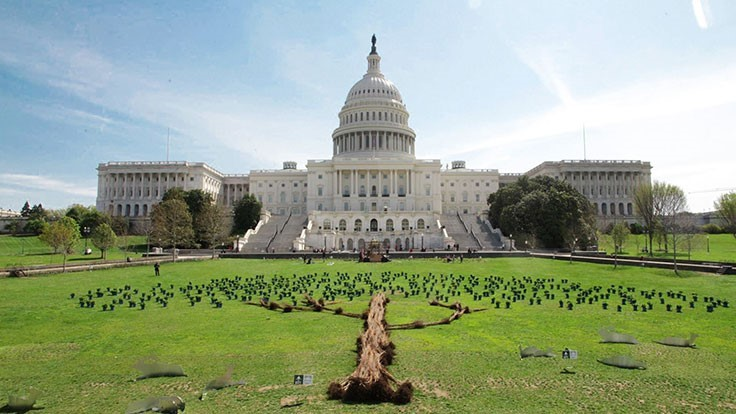 Tree art installation built to celebrate Earth Day at the Capitol