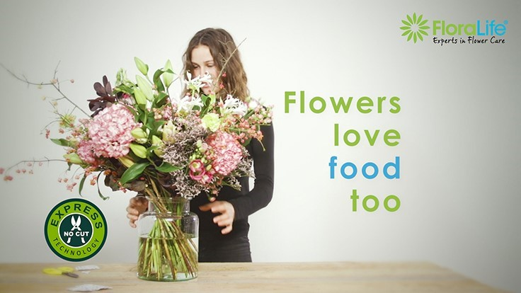 "Floralife ""Flowers Love Food Too!"" campaign launches in Europe"