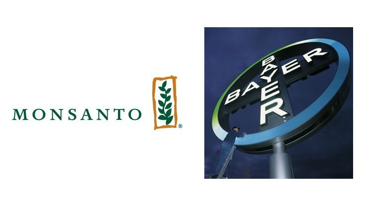 Justice Department allows Bayer to acquire Monsanto