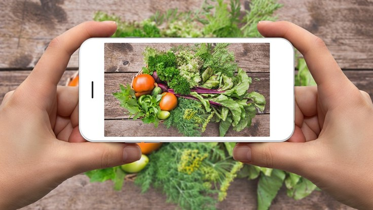 Urban farmers grow on social media
