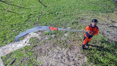 Extend Reach Pruning Tools