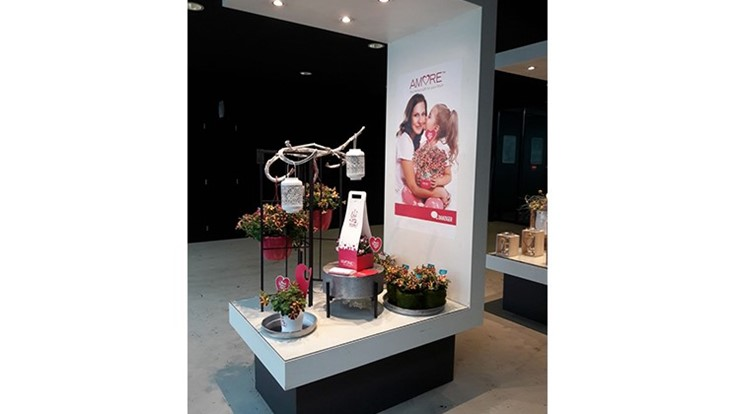Danziger launches new floral display for Mother's Day