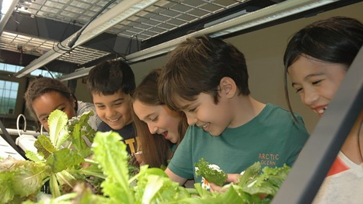 Princeton University's Vertical Farming Project partners with local elementary school