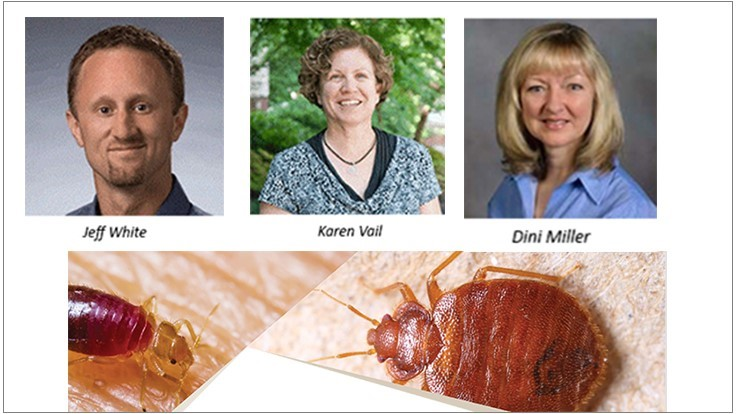 Reminder: PCT Bed Bug Virtual Event is Wednesday