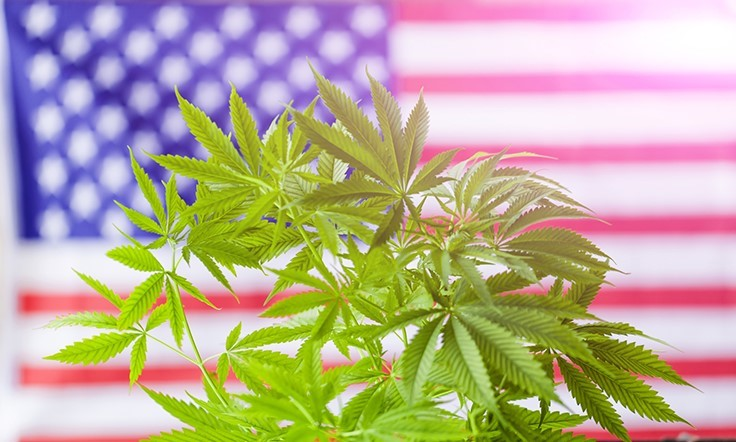 Senate Committee Passes Medical Marijuana Protections, Marijuana Justice Act Picks Up Support, Attorney General Jeff Sessions Stays Committed to Federal Cannabis Laws: Week In Review
