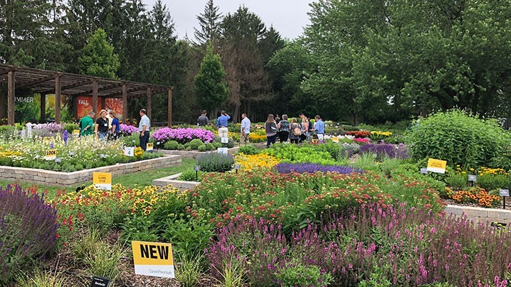 2018 Darwin Perennials Day recap