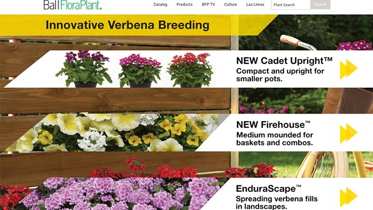 Ball FloraPlant announces redesigned website