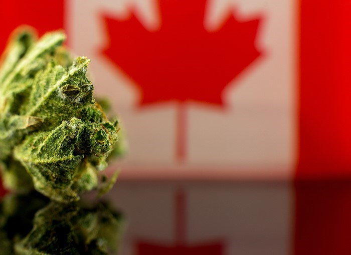 4 Marijuana Legalization Predictions For Canada Cannabis Business