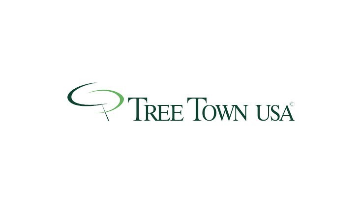 TreeTown USA acquires Hines division of Color Spot Nurseries