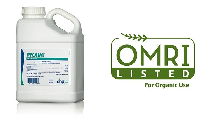 Pycana insecticide/miticide receives OMRI certification