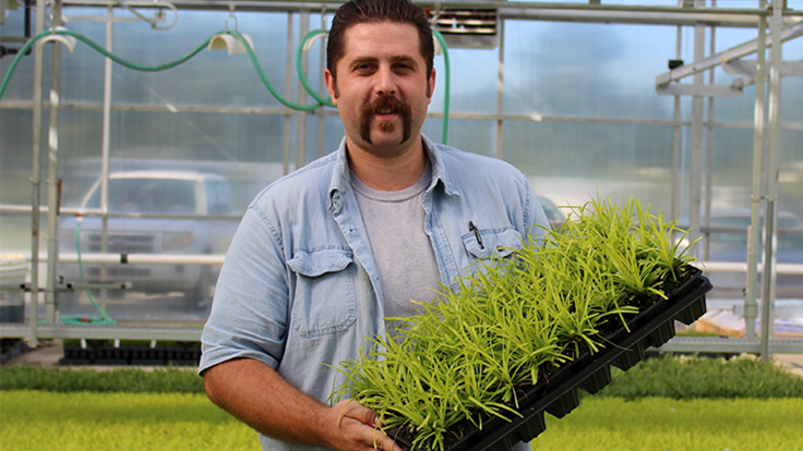 Hoffman Nursery promotes Brice Davis to production manager