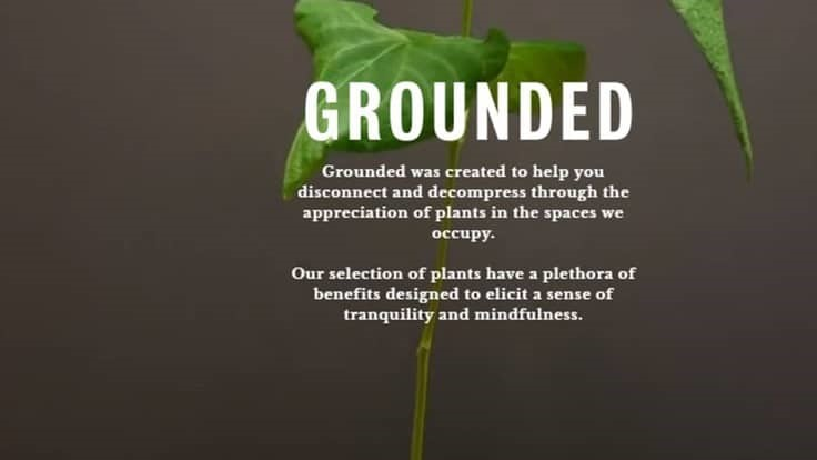 New Plant Subscription Service Launches In Washington D C