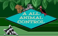 A All Animal Control Celebrates 15 years of Operation