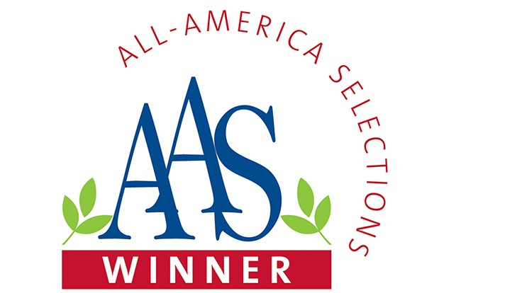 Availability expanding for six AAS-winning edible varieties