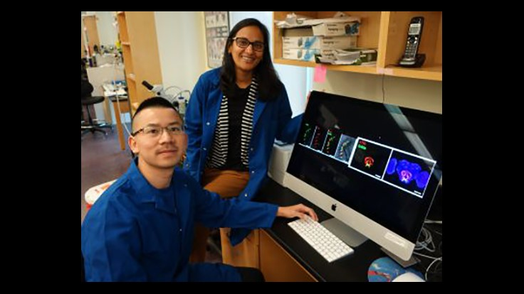 UCR Researchers Show How Insect Food Choice Can Be Manipulated