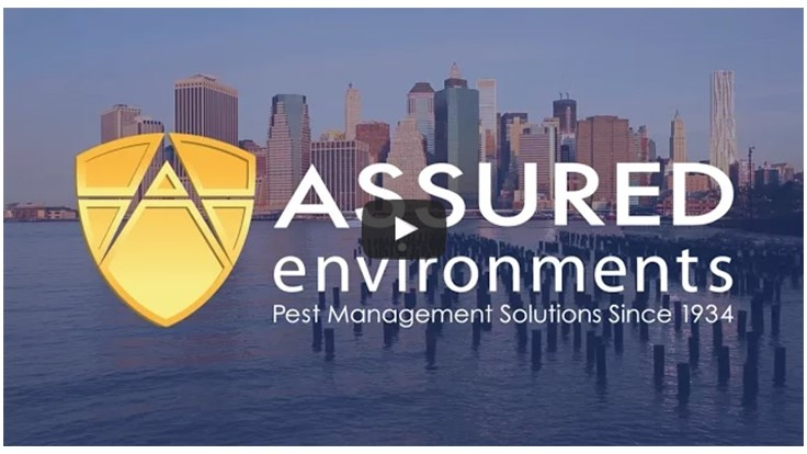 Assured Environments Celebrates 81 Years of Services