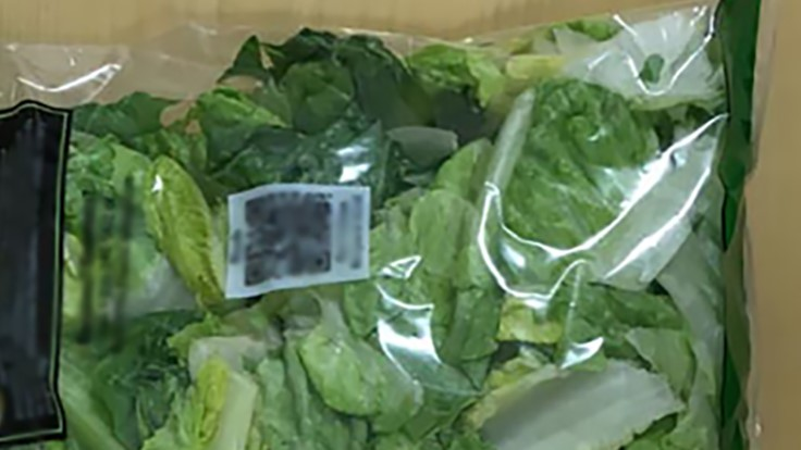 New Study Shows Bagged Cut Lettuce at Higher Risk of Salmonella
