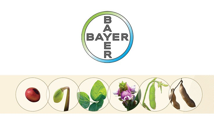 Bayer Crop Science considers seed expansion