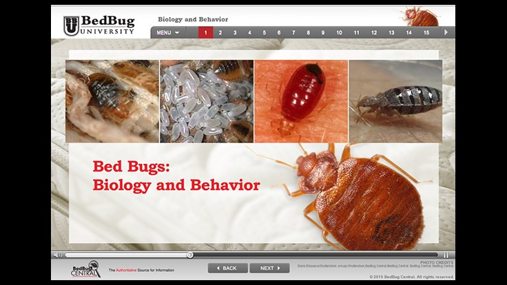 BedBug Central Launches e-Learning Series