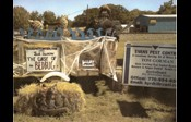 Evans Termite and Pest Control Creates Bed Bug Display for Scarecrow Village