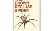 Vetter Pens New Book on the Brown Recluse Spider