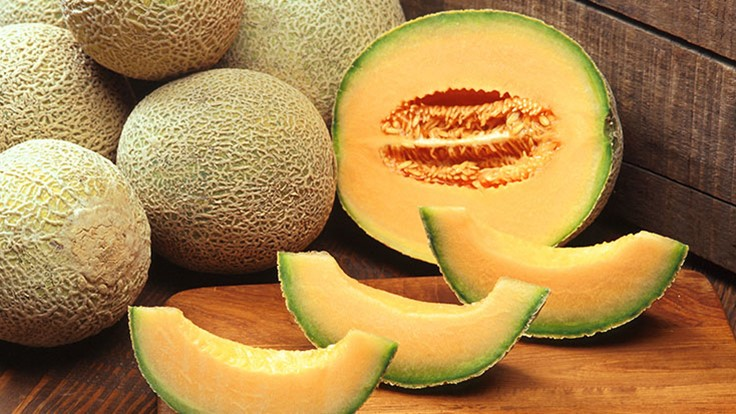 Research Shows Antimicrobial Coatings Reduce Cantaloupe Contamination