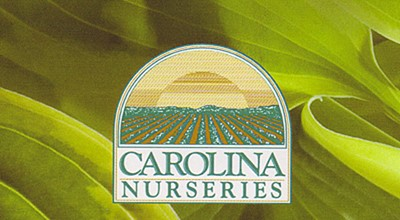 Carolina Nurseries faces possible closing