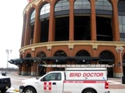 New Bird Misting System Installed for New York Mets at Citi Field