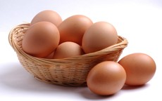Lower Cholesterol Levels Reported in Eggs
