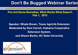 Extension Webinar: Fire Ant Home Remedies
