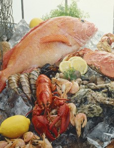 NOAA, FDA Continue Efforts to Ensure Safety of Gulf Seafood