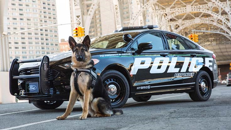 Ford to offer hybrid police pursuit vehicle