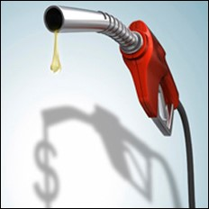 How does your company deal with rising fuel costs?