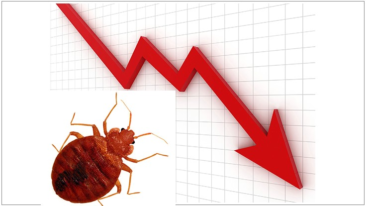 BBC Survey: Bed Bug Revenue Down in September Across Most of U.S.