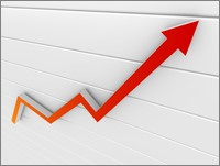 ServiceMaster Revenue Improves 3.9% in  2010