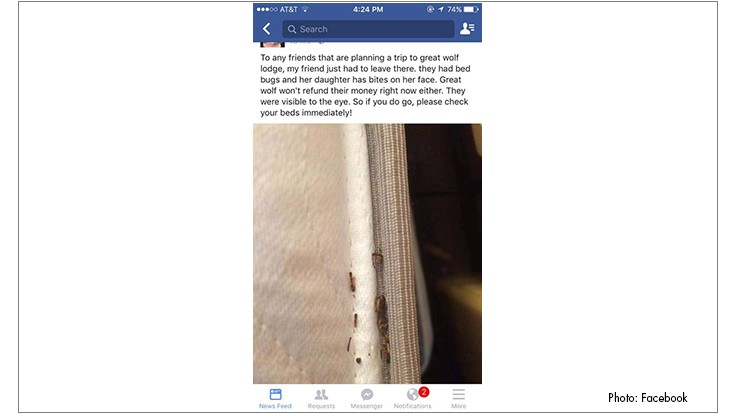 Great Wolf Lodge Fights Social Media Bed Bug Claims