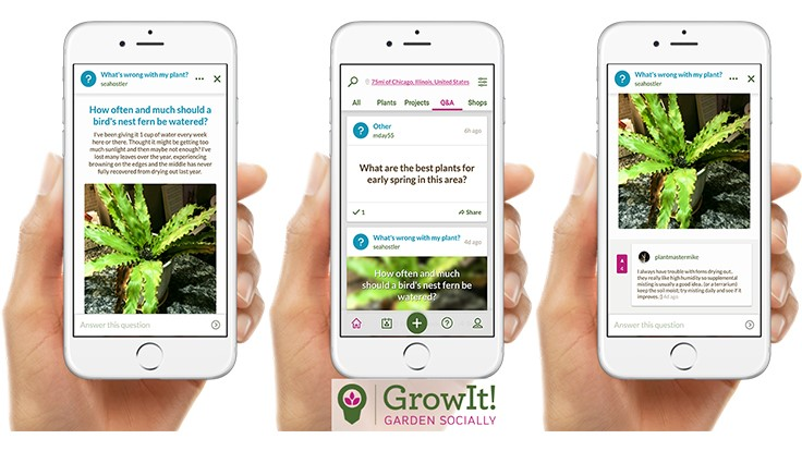 GrowIt! launches Question and Answer feature