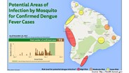 Hawaii Confirms 92 Dengue Fever Cases