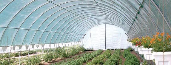 Pennsylvania bill exempts high tunnels, hoop houses from real estate taxes