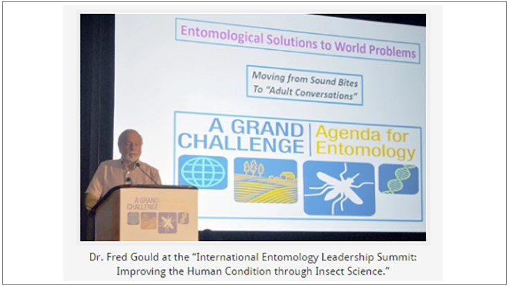 International Entomologists Gather in Orlando to Take on Grand Challenges