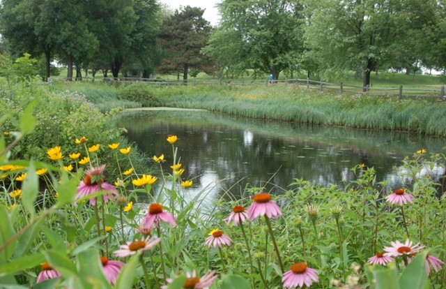 Minnesota course lauded for ecological work