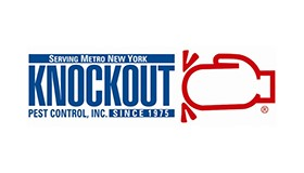 Knockout's Katz Recognized by Nassau Council of Chambers