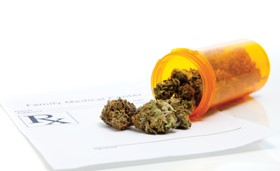 Medical marijuana and consultants