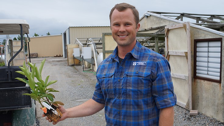 Innovation and improvement at Bennett's Creek Nursery