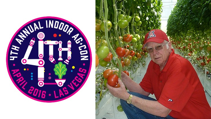 On hydroponics: picking the brain of Dr. Merle Jensen