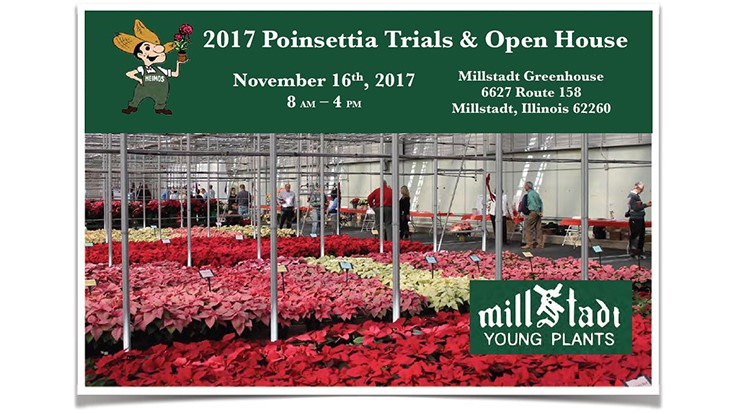 Millstadt Young Plants and N.G. Heimos Greenhouses announce 10th Annual Poinsettia Trial Open House